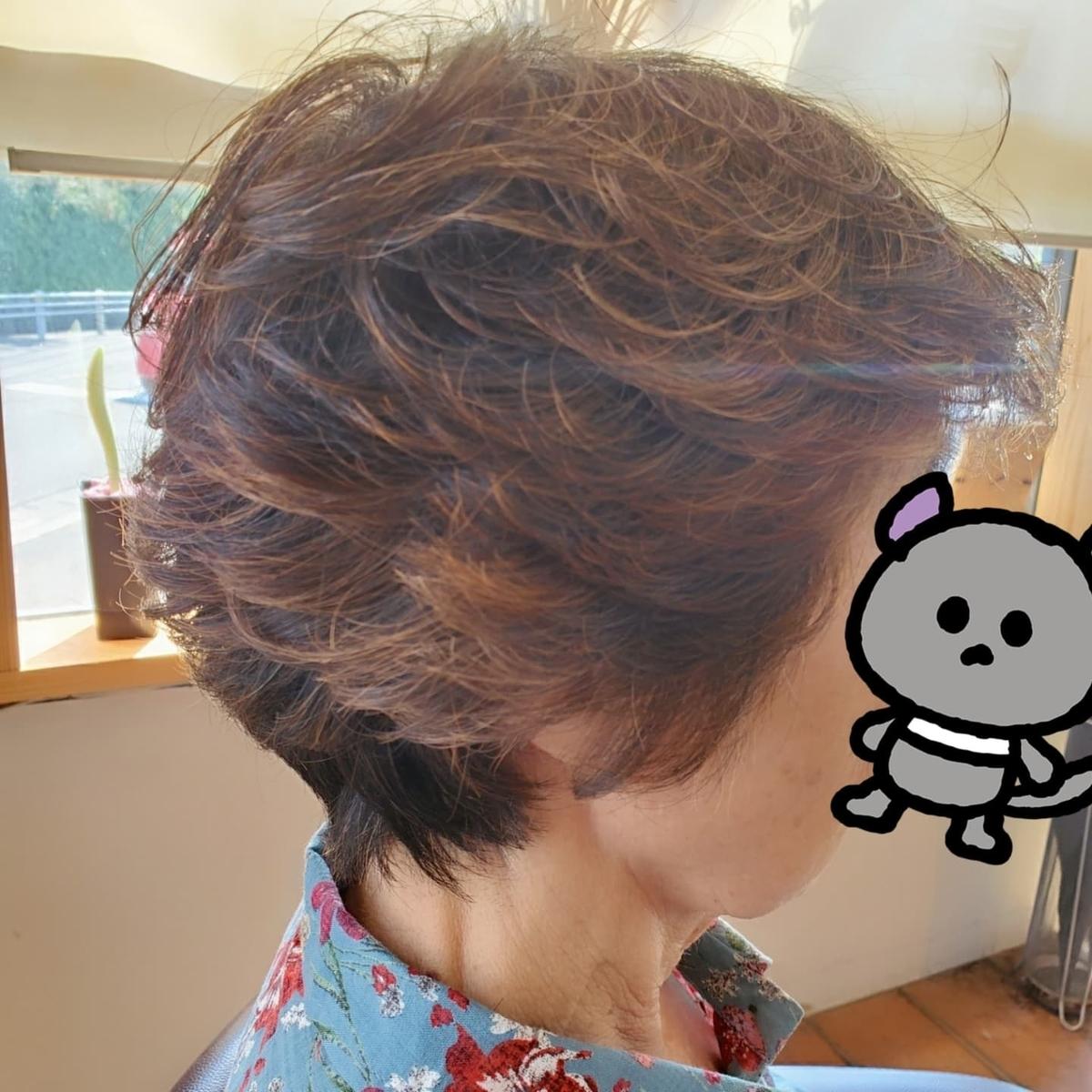 f:id:hiro-964c2:20211009213704j:plain