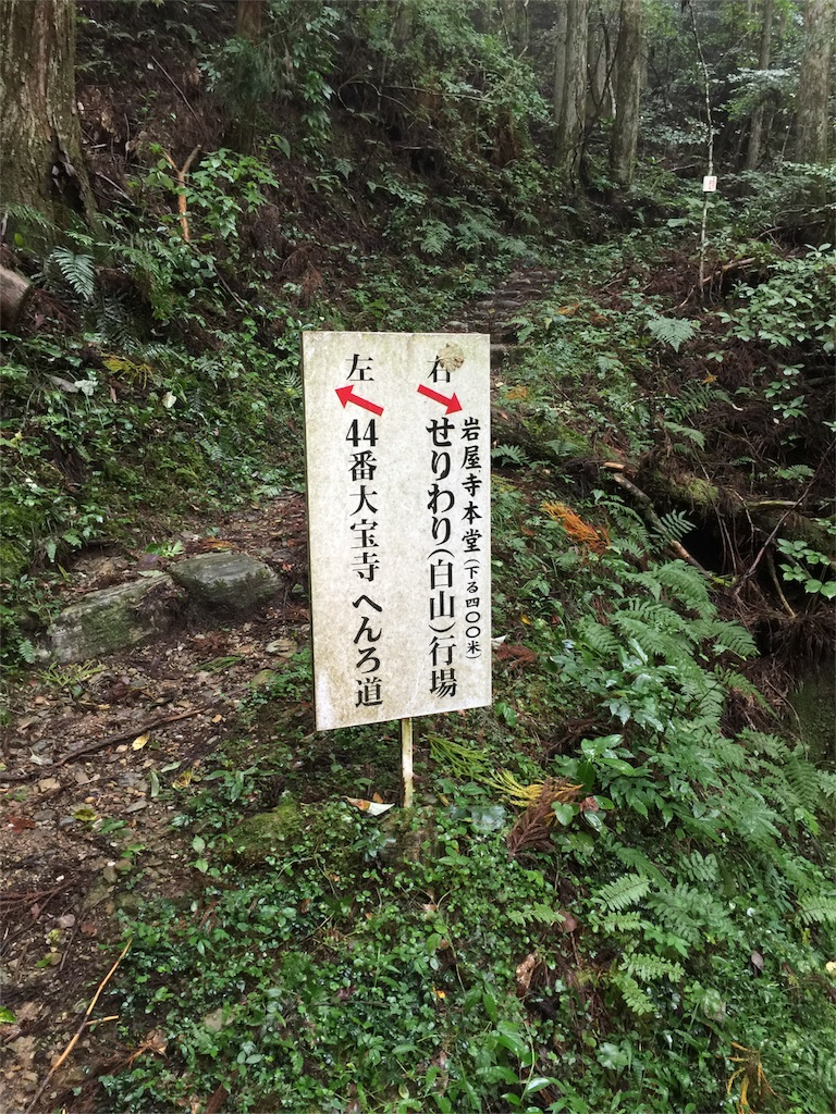 f:id:hiro-asamiya:20160924054617j:image