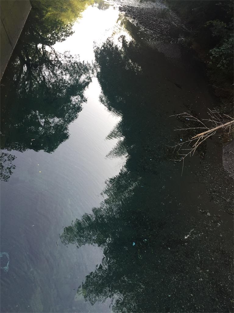 f:id:hiro-asamiya:20161002225923j:image