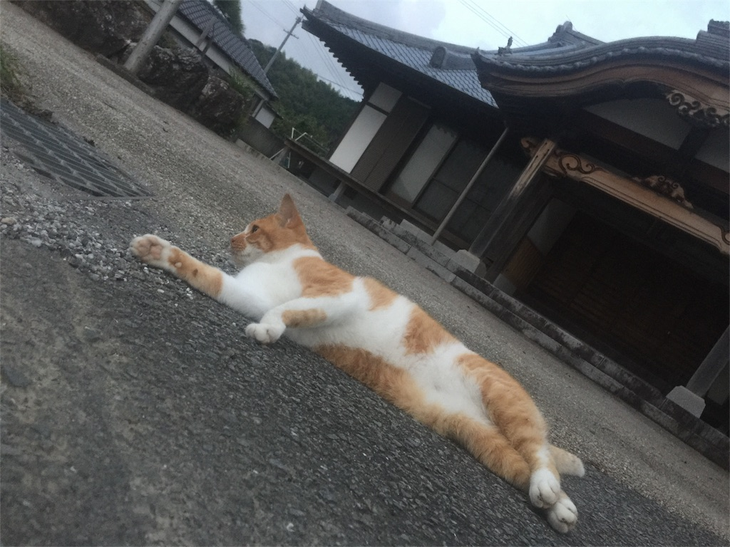 f:id:hiro-asamiya:20161003021930j:image