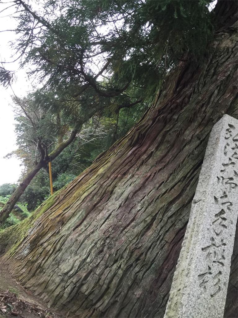 f:id:hiro-asamiya:20161012022006j:image