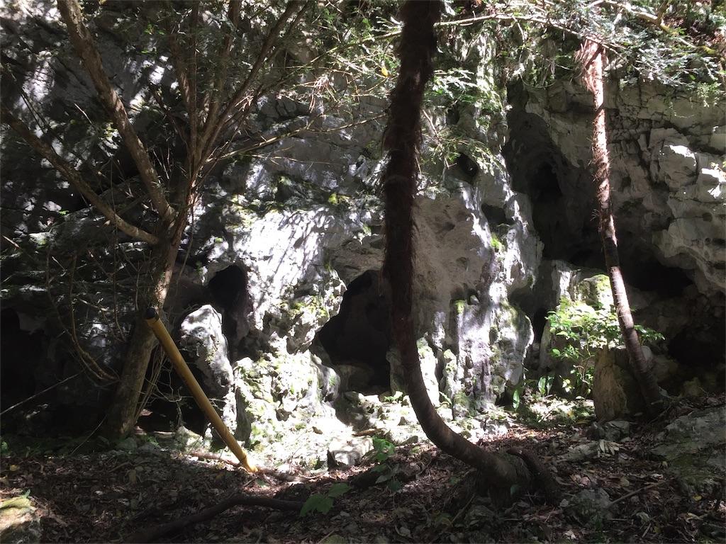 f:id:hiro-asamiya:20161014052125j:image