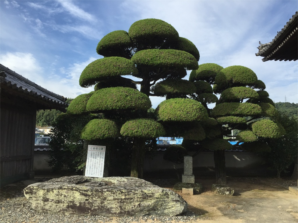f:id:hiro-asamiya:20161018134738j:image