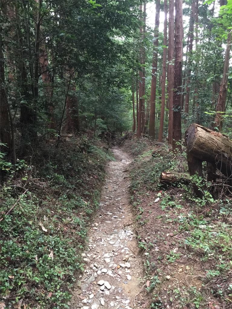 f:id:hiro-asamiya:20161020214641j:image