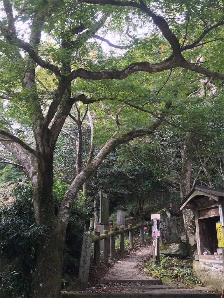 f:id:hiro-asamiya:20161022073000j:image