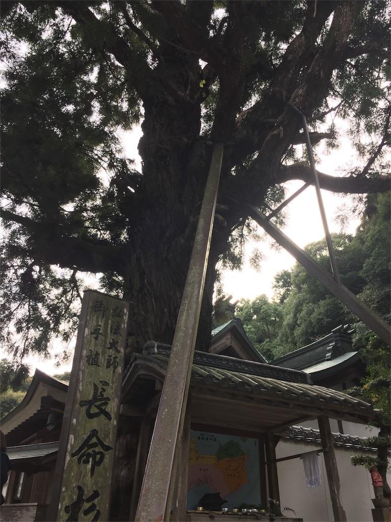 f:id:hiro-asamiya:20161023173943j:image