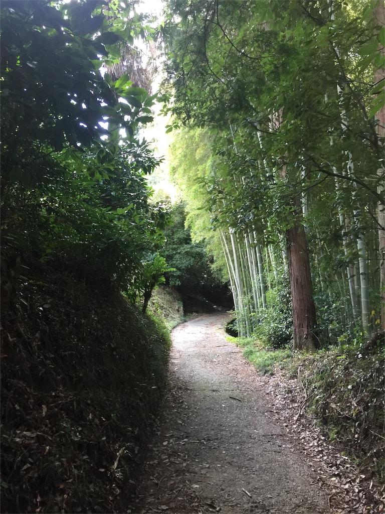f:id:hiro-asamiya:20161025203558j:image