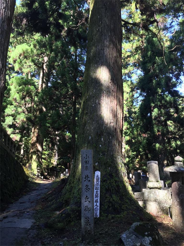 f:id:hiro-asamiya:20161029133650j:image
