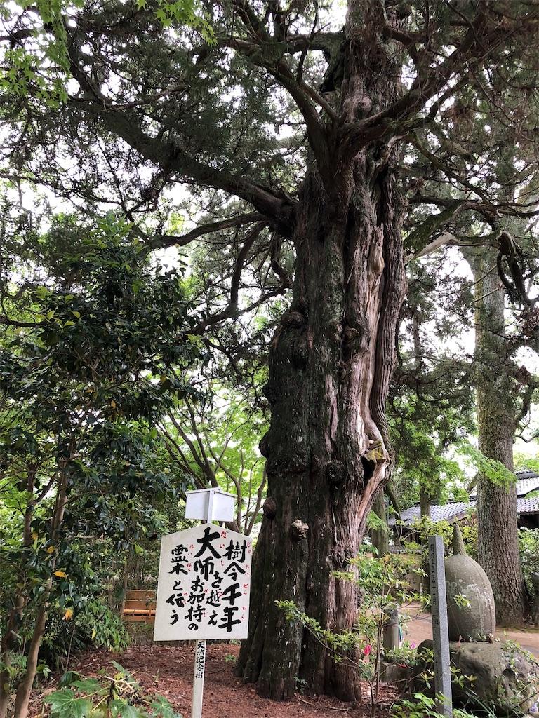 f:id:hiro-asamiya:20190517121140j:image