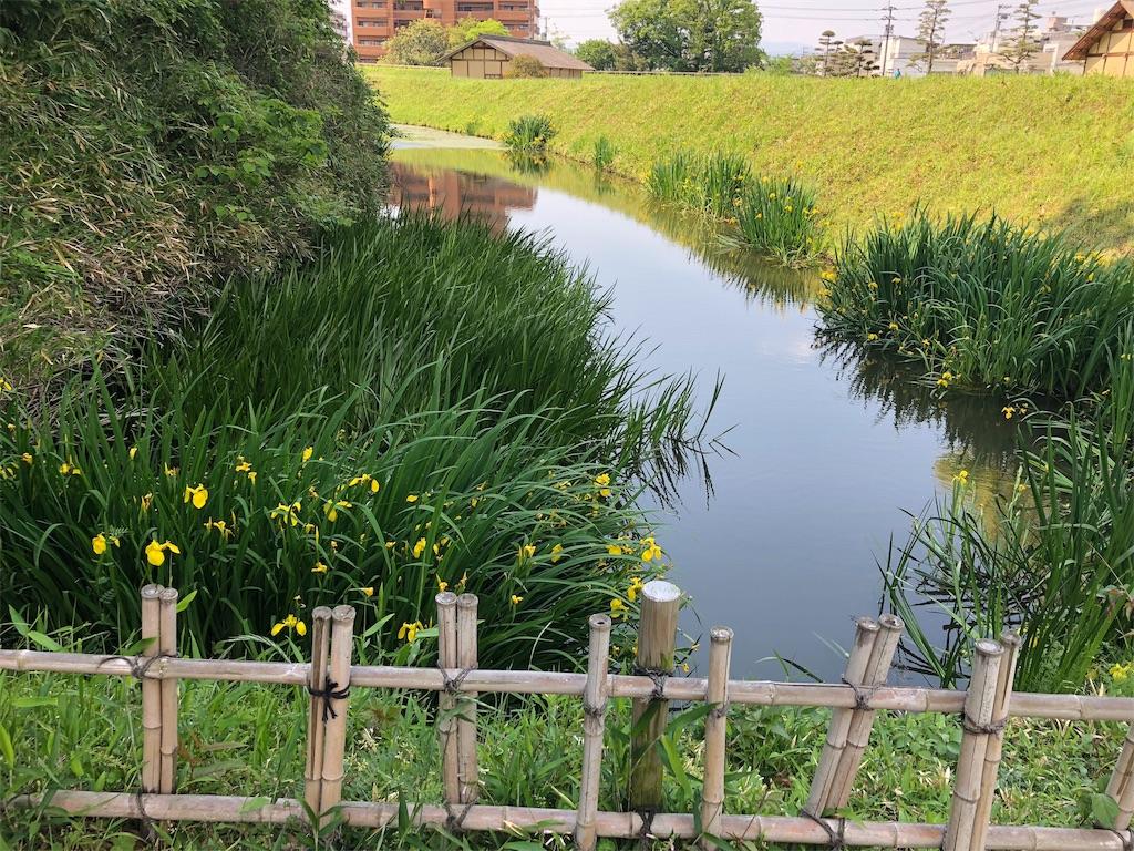 f:id:hiro-asamiya:20190527151859j:image