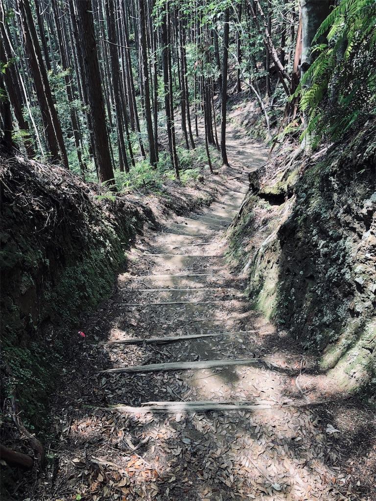 f:id:hiro-asamiya:20190703114002j:image