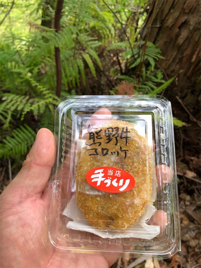 f:id:hiro-asamiya:20190703114020j:image