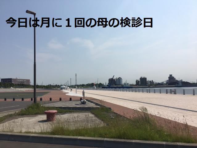 f:id:hiro-beans-attack-no1:20170819153527p:plain