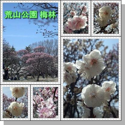 f:id:hiro-creative:20130308225959j:image