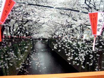 f:id:hiro-jp:20100404132845j:image