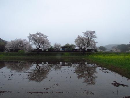 f:id:hiro-jp:20150405162635j:plain