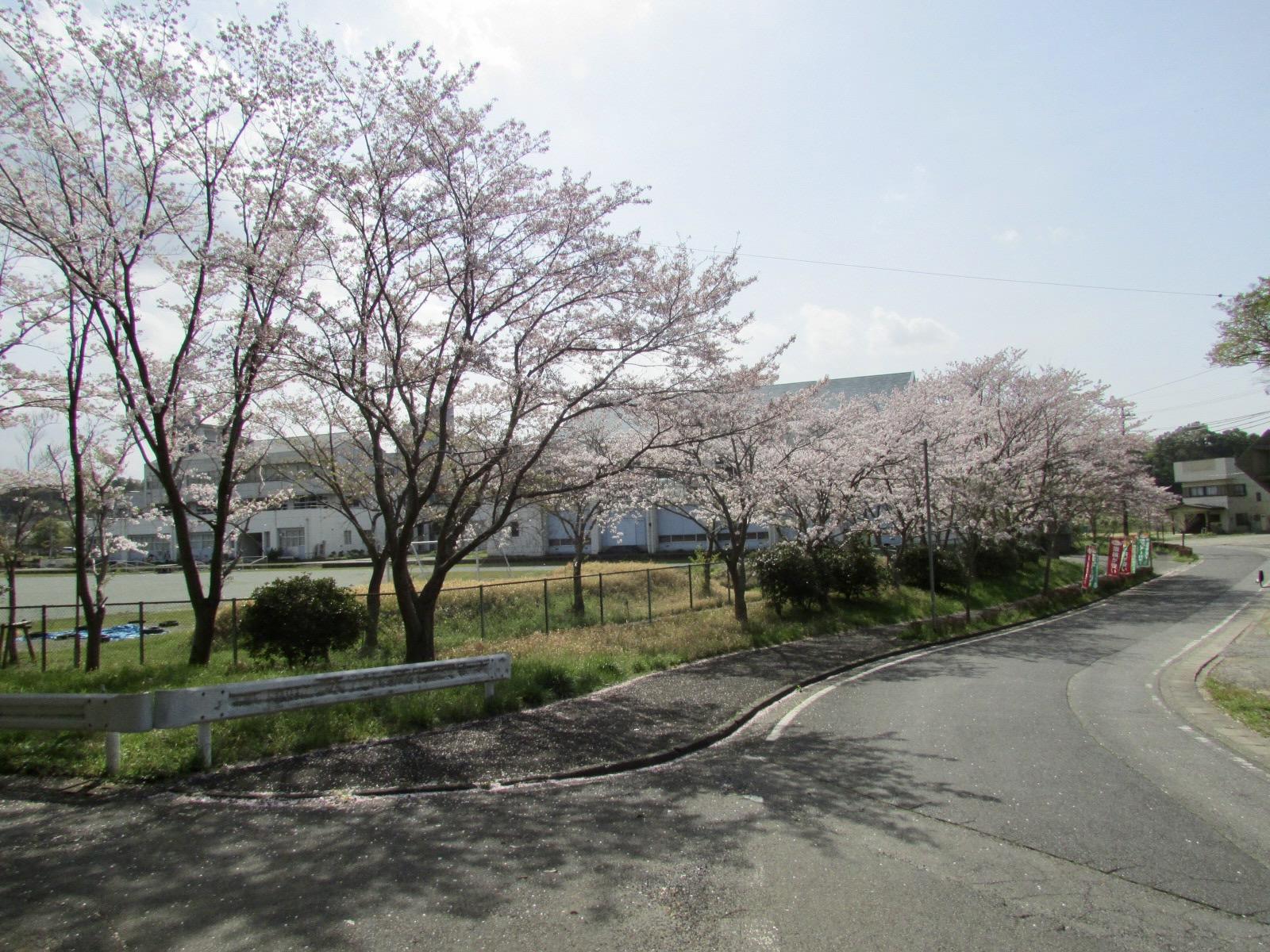 f:id:hiro-jp:20210401141225j:plain