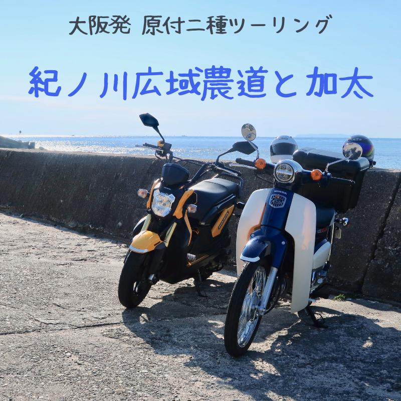 f:id:hiro-maki:20190208195906p:plain