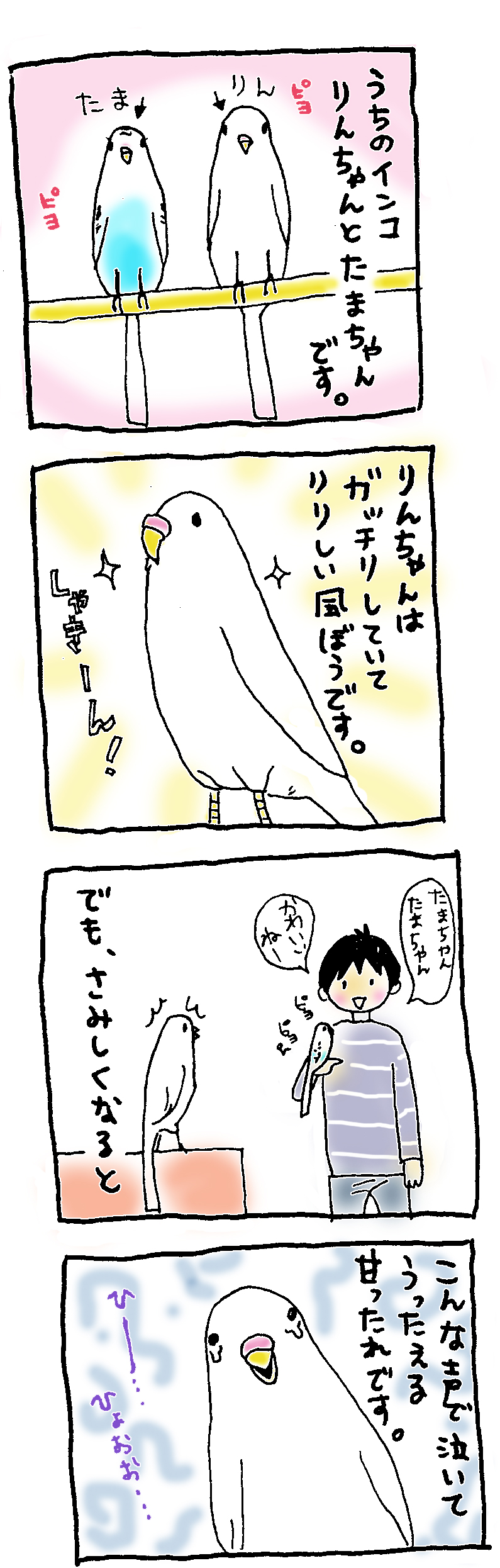 http://f.st-hatena.com/images/fotolife/h/hiro-okawari/20150512/20150512150608_original.jpg?1431410782
