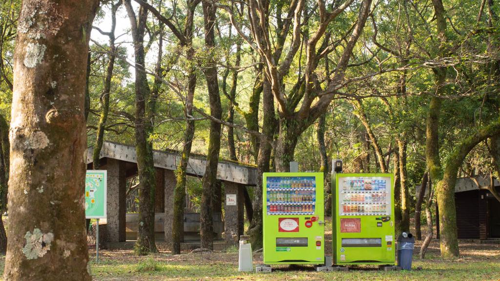 入野松原キャンプ場(炊事棟とトイレ・シャワー棟)