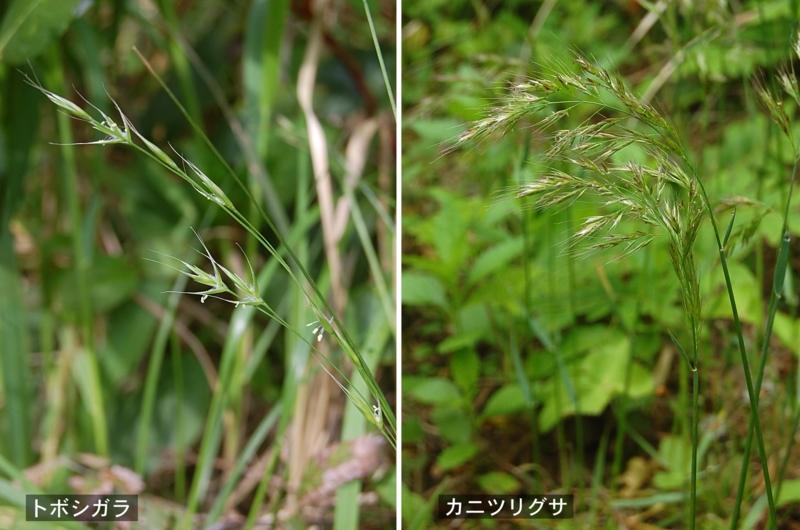 f:id:hiro1216:20120416162319j:image