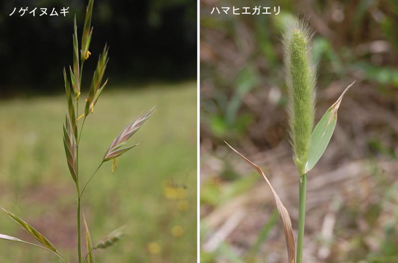f:id:hiro1216:20120425170225j:image