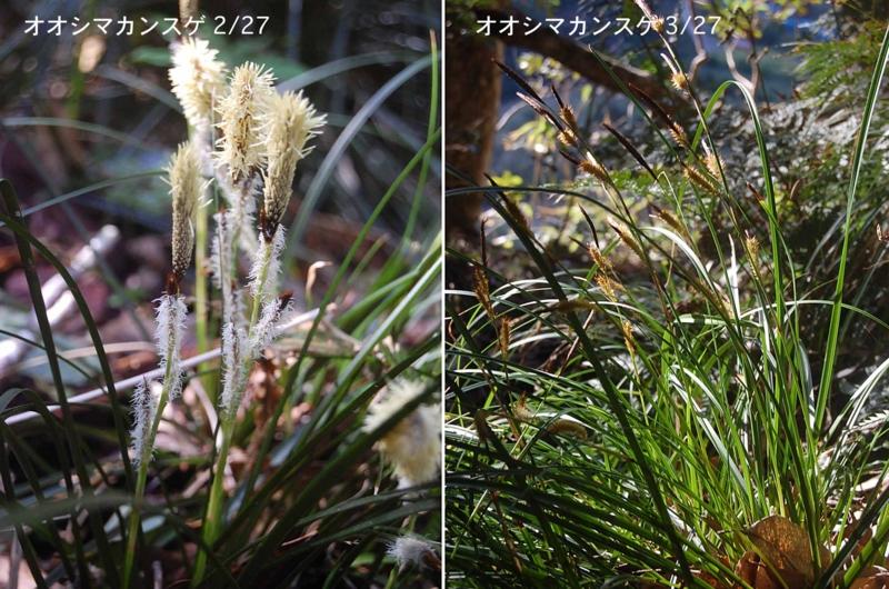 f:id:hiro1216:20120520211914j:image