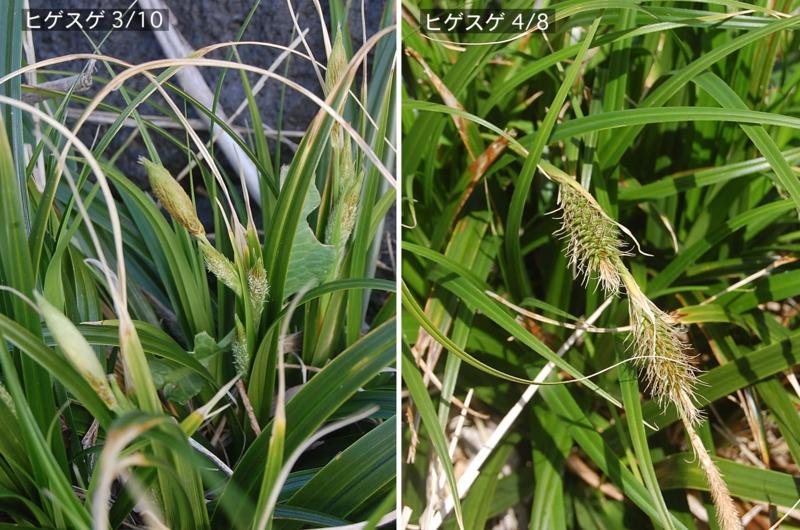 f:id:hiro1216:20120520212010j:image