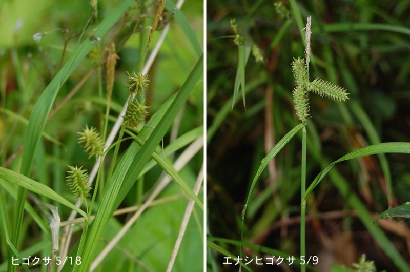 f:id:hiro1216:20120522121241j:image