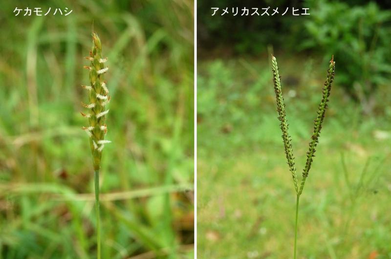 f:id:hiro1216:20120623174629j:image