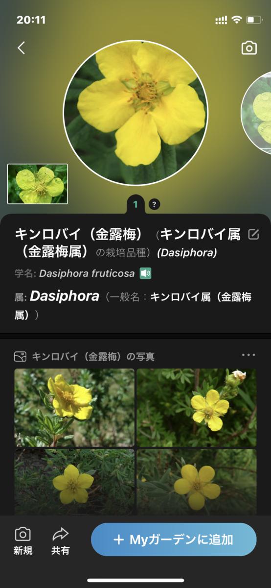 f:id:hiro9332:20210329201453p:plain