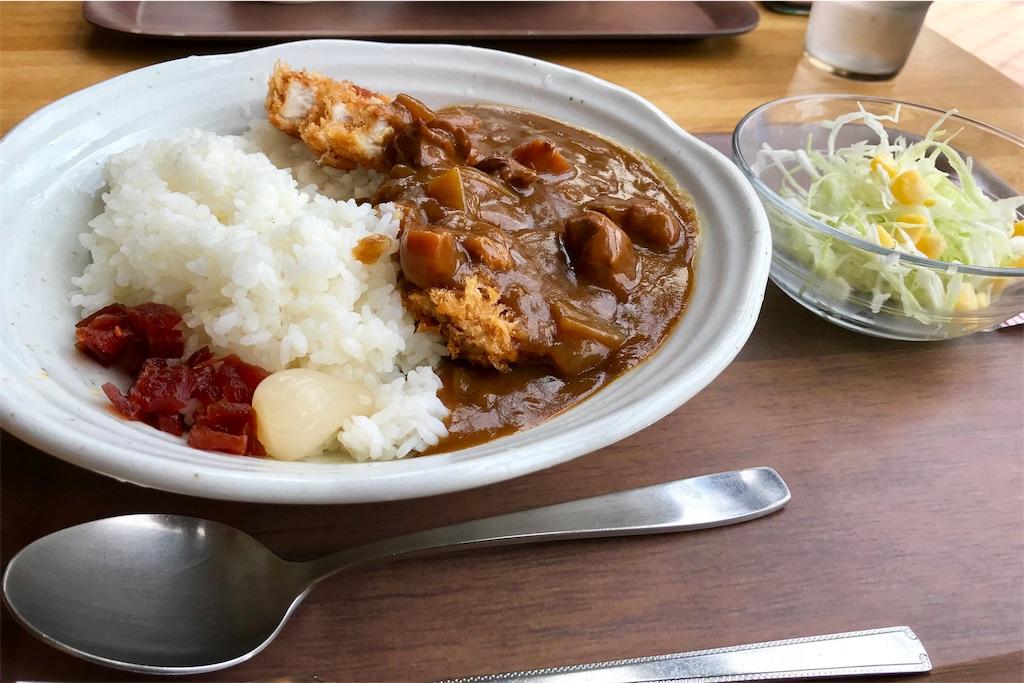 町田市立総合体育館・1階の福祉レストラン「フレンズ」のカツカレー