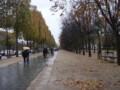 シャンゼリゼ大通り@パリ