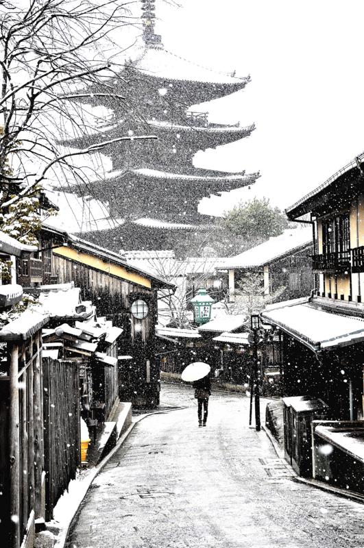 京都新聞写真コンテスト雪の朝