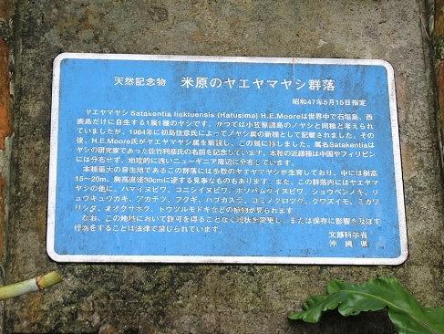 f:id:hirochanna:20210619161352j:plain