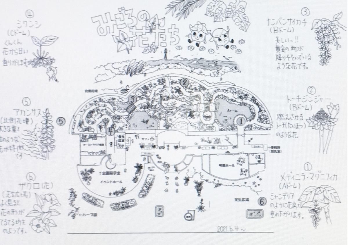 f:id:hirochanna:20210619162007j:plain