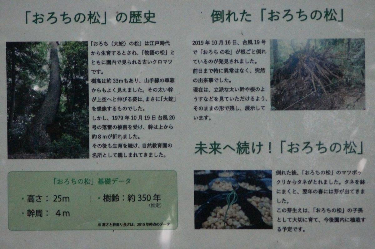 f:id:hirochanna:20210719005219j:plain