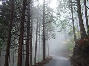 f:id:hirohiro:20081026185125j:image
