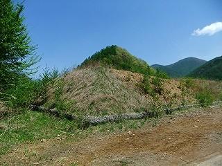 f:id:hirohiro:20110515165311j:image