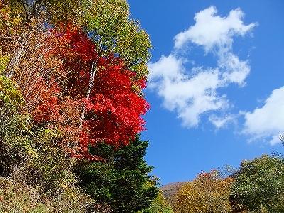 f:id:hirohiro:20131028130217j:image