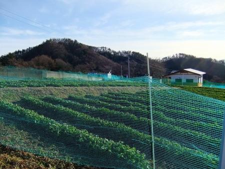 f:id:hirohiro:20141222065845j:plain
