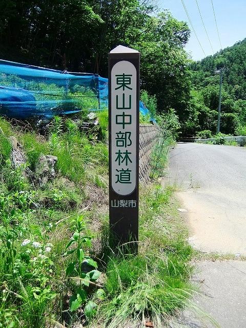 f:id:hirohiro:20150628184431j:plain