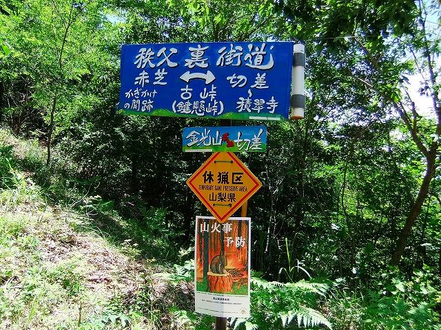 f:id:hirohiro:20150628184853j:plain