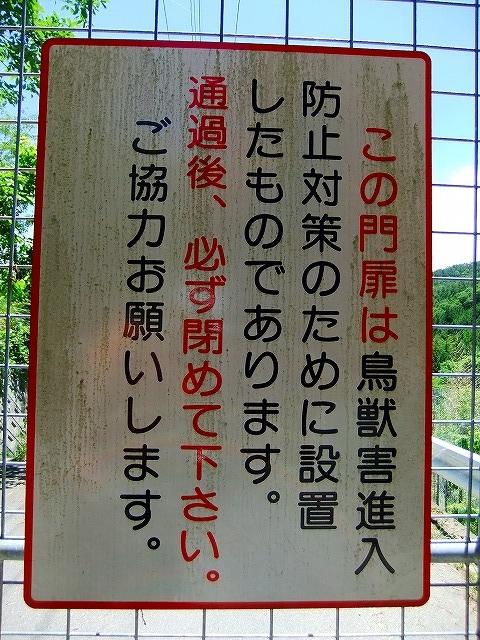 f:id:hirohiro:20150628193434j:plain