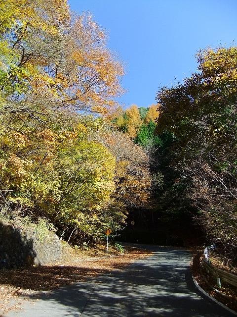 f:id:hirohiro:20161114202320j:plain