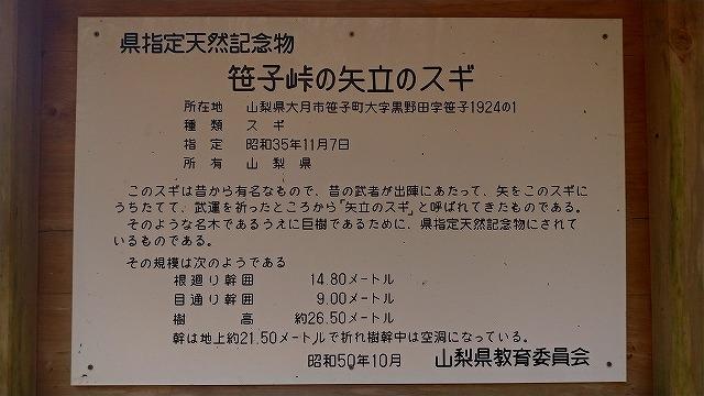 f:id:hirohiro:20181123213635j:plain