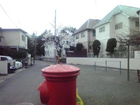 f:id:hirohiro3:20100402081611j:image