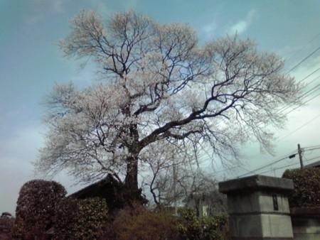 f:id:hirohiro3:20100403122129j:image