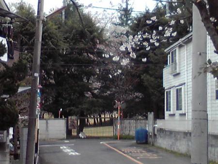 f:id:hirohiro3:20100404124229j:image