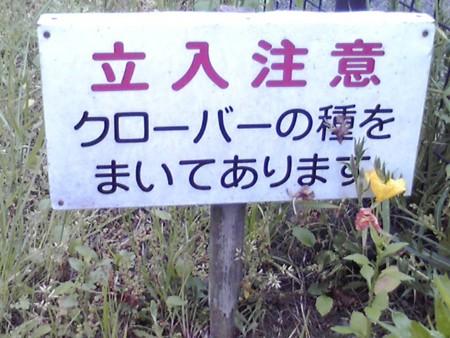 f:id:hirohiro3:20100515173153j:image